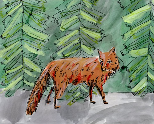 "Elizabeth Graeber, ""Fox in Woods,"" Ink and Watercolor"
