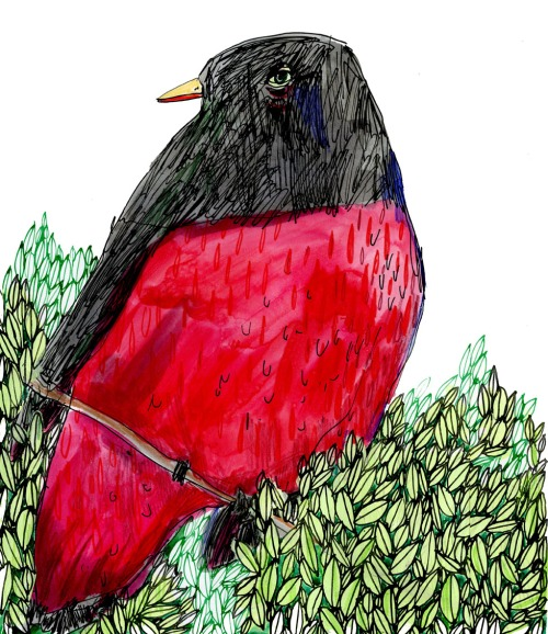 "Elizabeth Graeber, ""Red Bird with Leaves,"" Ink and Watercolor"