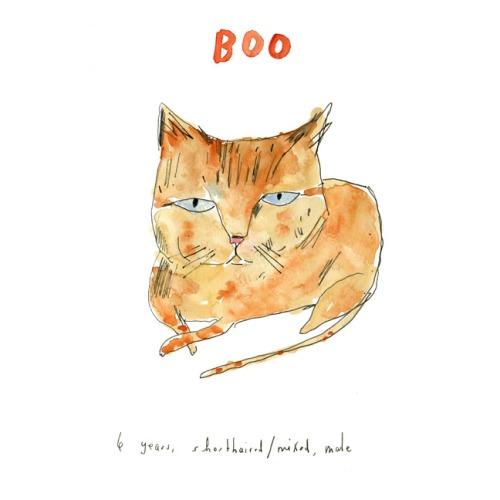 Cat, Watercolor in sketchbook